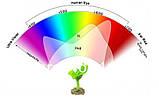 Настільна лампа для рослин 12W LED GROW ФІТО, фото 5
