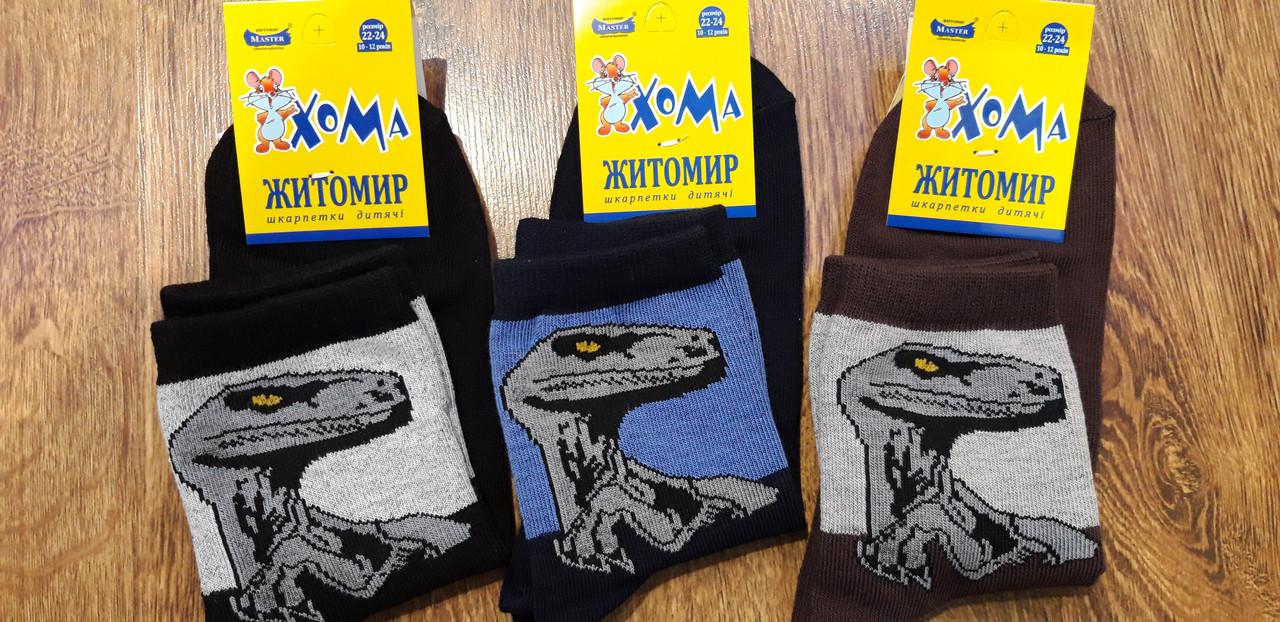 """Дитячі стрейчеві шкарпетки""""ХОМА Master"""" Житомир Динозавр 22-24(10-12 років)"""
