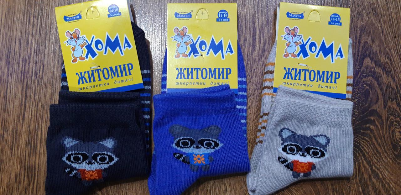 """Дитячі стрейчеві шкарпетки""""ХОМА Master"""" Житомир Єнотик 14-16(3-4 роки)"""