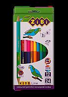 Карандаши цветные 12 штук 24 цвета Double KIDS Line ZiBi