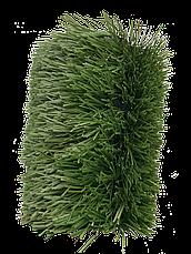 Stemgrass, фото 2