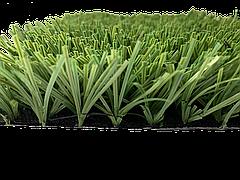 Stemgrass, фото 3