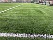 Stemgrass, фото 5