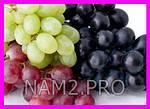 Домашний виноград Cпелый Cад, фото 2