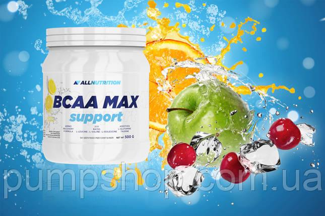 Бцаа AllNutrition BCAA max support 500 г, фото 2