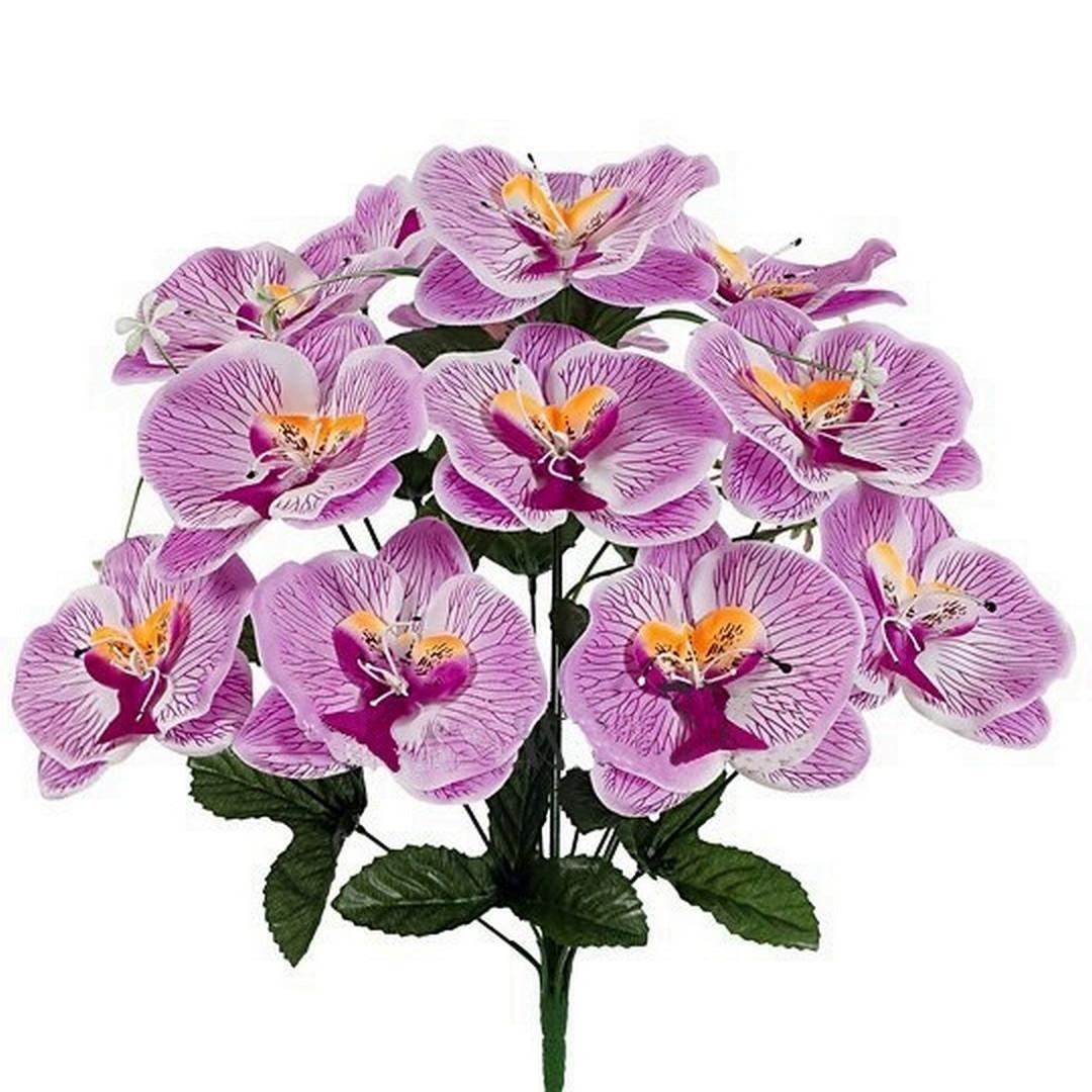 Букет великих орхідей, 52см (8 шт. в уп)