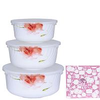 Набор салатников с крышкой 3 шт Цветочная акварель SNT 30053-16005
