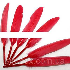 (100шт) Перо декоративное цветное. 14 см. Цена за 100 шт. Цвет - красный (сп7нг-0592)