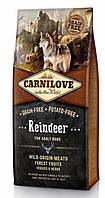 Сухой корм Carnilove Dog Adult Reindeer 12кг