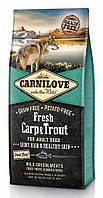 Сухой корм Carnilove Dog Fresh Adult Carp & Trout 12кг