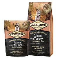 Сухой корм Carnilove Puppy Large Breed Salmon & Turkey 12кг