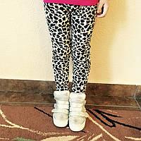 Детские велюровые леопардовые лосины