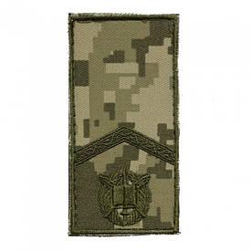 Погон на липучке ВСУ полевой нового образца старший курсант ММ-14
