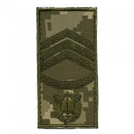Погон на липучке ВСУ полевой нового образца старший сержант ММ-14