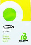 Сантамария F1 семена цветной капусты Rijk Zwaan Голландия 1000 шт, фото 2