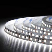 Светодиодная лента BIOM Professional BPS-G3-12-2835-120-NW-20 нейтральный белый, негерметичная, 5метров