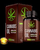 Cannabis Oil (Каннабис Оил) - конопляное масло для суставов, фото 1