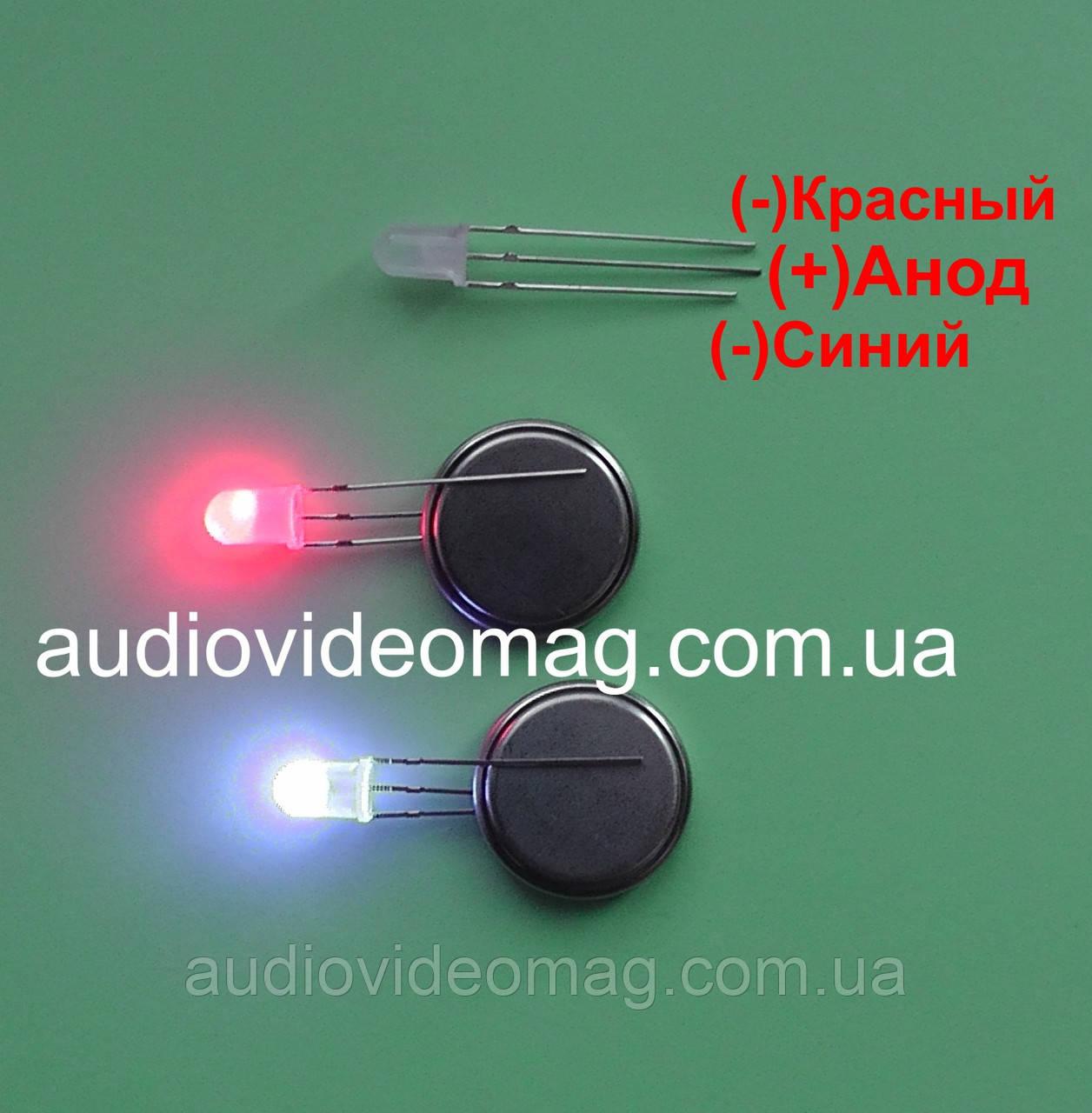 Світлодіод 3V 5 мм з загальним АНОДОМ, двоколірний, червоний і синій
