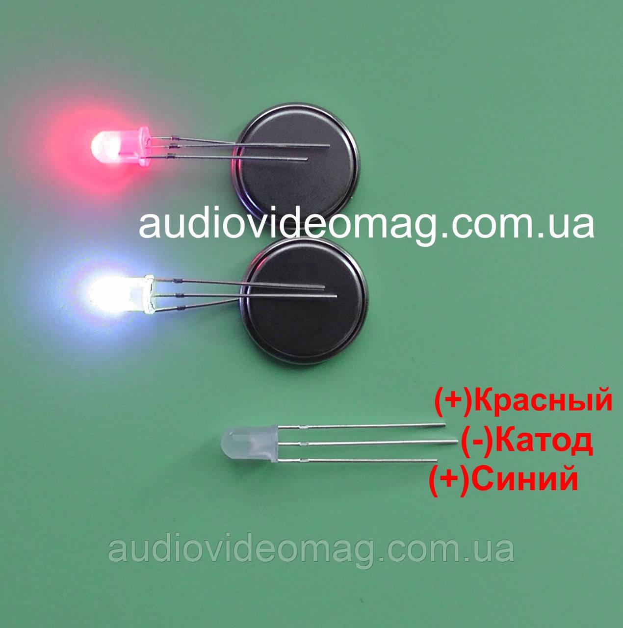 Світлодіод 3V 5 мм з загальним КАТОДОМ, двоколірний, червоний і синій