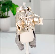 Одежда для маленьких собак модная осенне-зимняя куртка для собак, фото 3