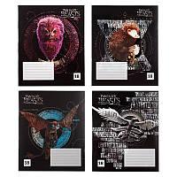 Тетрадь школьная Kite Harry Potter HP20-237-2, 18 листов, в линию