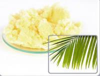 Масло пальмы, нерафинированное (белое)