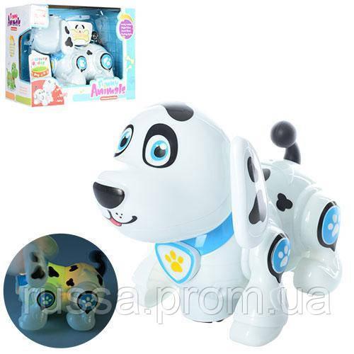 Собака 696-25