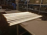 Проект освещения «Мироновской птицефабрики» в одну линию.