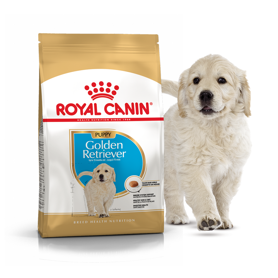 Сухой корм для щенков породы Золотистый ретривер Роял Канин Royal Canin GOLDEN RETRIEVER PUPPY, 3 кг