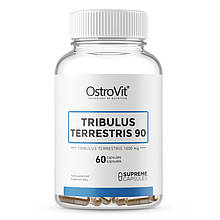 Трибулус TRIBULUS TERRESTRIS 90  60 капсул