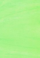 ДВПО Берёза зелёная 2745х1700 мм