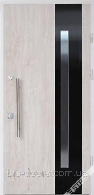 Двері вхідні STRAJ Proof модель Estra