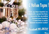 С Новым 2013 Годом !