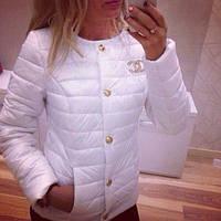 Короткая женская курточка шанель