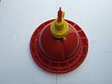 Автопоилка дзвонова середня для бройлерів, фото 2