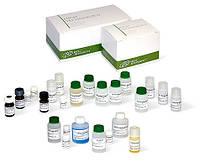 Биохимические реагенты (билирубин,мочевина), HTI