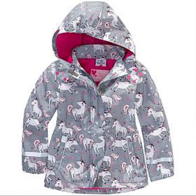 Куртки, дождевики, ветровки