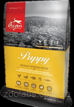 Сухий корм Orijen для цуценят   Orijen Puppy 11,4 кг, фото 2