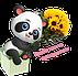 Florist24