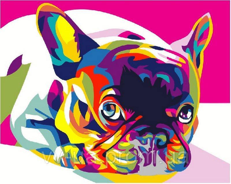 Картина по номерам Радужный французский бульдог, 40x50 см, премиум упаковка, Brushme (Брашми)