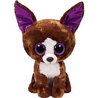 Мягкая игрушка TY Beanie Boos Чихуахуа Dexter, 25 см (37259)