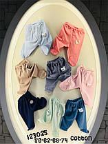 Штанишки в разных цветах для малышей 2-9 месяцев
