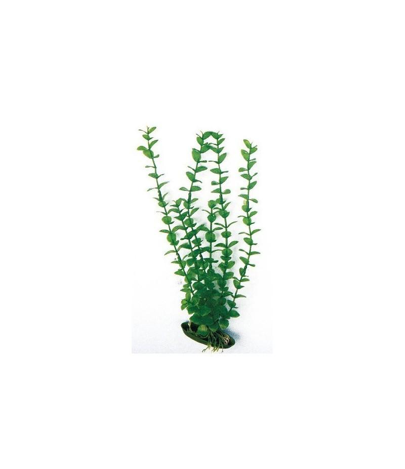 Искусственное растение ROTALA CLASSIC , 27 см