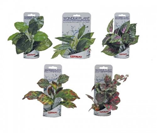 Искусственное растение WONDER  B в ассортименте  , 15-18 см