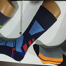 Високі махрові чоловічі носки Termo Treck, фото 3