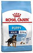 Royal Canin (Роял Канин) Maxi Puppy Корм для щенков крупных пород 15 кг