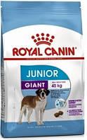 Royal Canin (Роял Канин) Корм для щенков крупных пород Giant Junior 15 кг