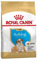 Корм для щенка английского бульдога Royal Canin Bulldog Junior 12 кг