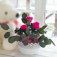 Композиция Стабилизированные розы и растения Кашпо ажур круглое большое Lerosh