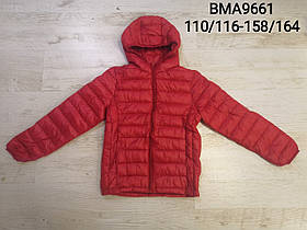 Куртки для мальчиков опт, размеры 110/116-158/164р Glo-story, арт.BMA 9661